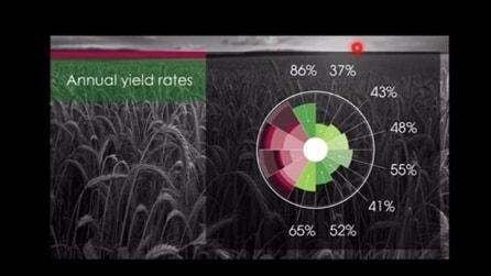 Office per iPad: gli screenshot delle nuove applicazioni di Microsoft