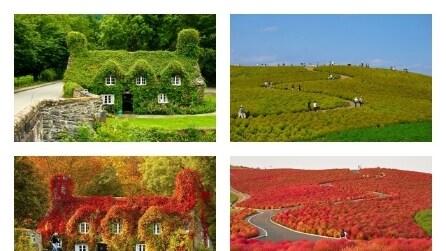 Trasformazioni d'autunno: come cambia la realtà in base alle stagioni