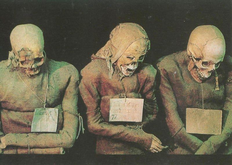 """Le mummie, in piedi o coricate, vestite di tutto punto, sono divise per sesso e categoria sociale, anche se la maggior parte di esse appartengono ai ceti alti, poiché il processo di imbalsamazione era costoso. Nei vari settori si riconoscono: prelati; commercianti e borghesi nei loro vestiti """"della domenica""""; ufficiali dell'esercito in uniforme di gala; giovani donne vergini."""