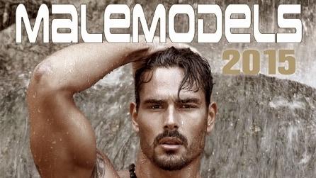 Il calendario dei modelli 2015