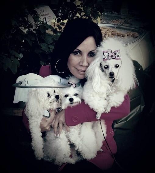 Silvie Bordeaux ha inventato un supporto utile ai cani ciechi. Si chiama Muffin's Halo ed evita a Fido di sbattere il muso contro gli ostacoli che incontra.
