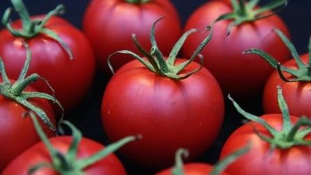 Cosa mangiare per combattere l'acne? Ecco 10 cibi che la prevengono