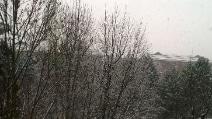 Arriva la neve a Milano: la città imbiancata per la prima volta in questo inverno