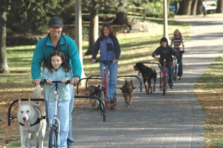 Gli animalisti saranno forse contrari perché questo scooter è mosso dall'andatura canina ma i produttori assicurano il totale divertimento e sicurezza di uomini e animali.