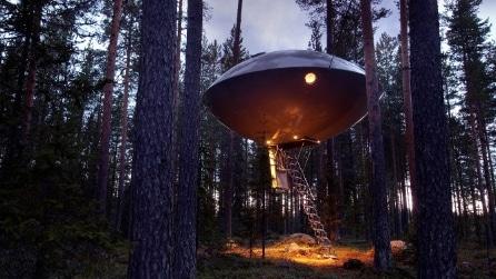 Un nido, un cubo di specchi o un ufo: in ogni caso sopra alla foresta