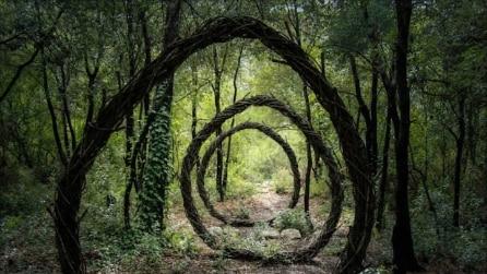 Boschi incantati: le 10 sculture naturali più affascinanti che abbiate mai visto