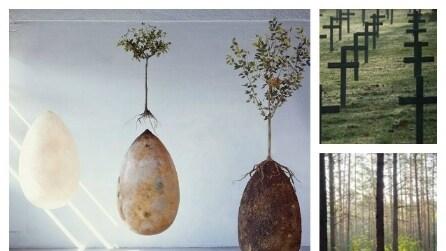 Capsula Mundi: la prima sepoltura che trasformerà i vostri cari in alberi