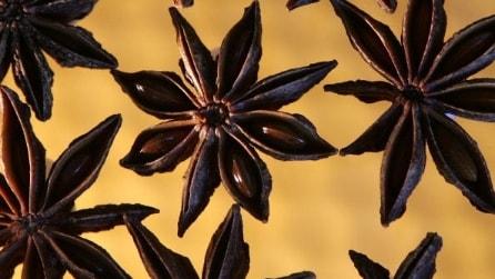Spezie e erbe aromatiche alleate della salute