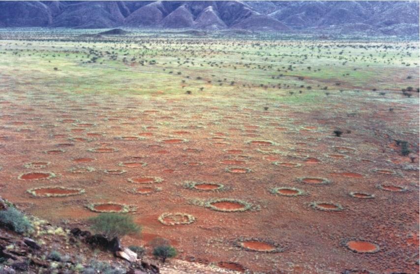 http://de.wikipedia.org/wiki/Feenkreis#/media/File:Fairy_circles_namibia.jpg