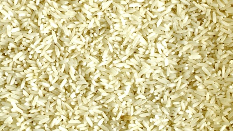 I cereali integrali aiutano perdere peso e apportano benefici all'organismo grazie al loro contenuto di fibre.