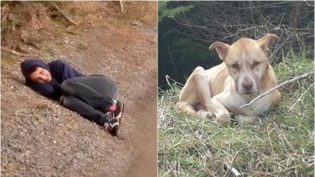 Si stende a terra per ore accanto a questo cane randagio e lui reagisce così