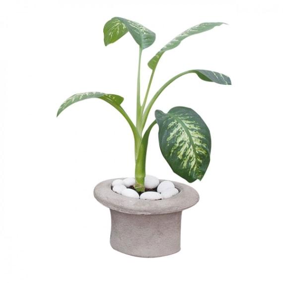 Vaso portapiante a forma di cilindro, Seletii €49