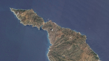 Santa Catalina, l'isola californiana che rischia di scomparire