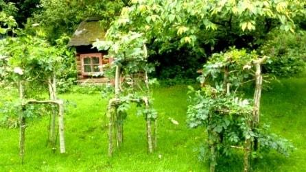 Come creare i propri arredi? Ecco gli alberi a forma di mobili