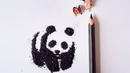Trucioli di pastelli diventano meravigliose opere d'arte