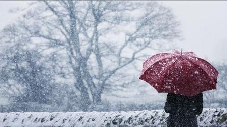 Scoperto il gene che si attiva in estate ma ci fa ammalare d'inverno