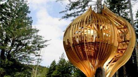 The Redwoods Treehouse: il ristorante sull'albero più incredibile del mondo