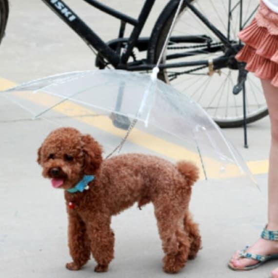 Il guinzaglio con ombrello incorporato.