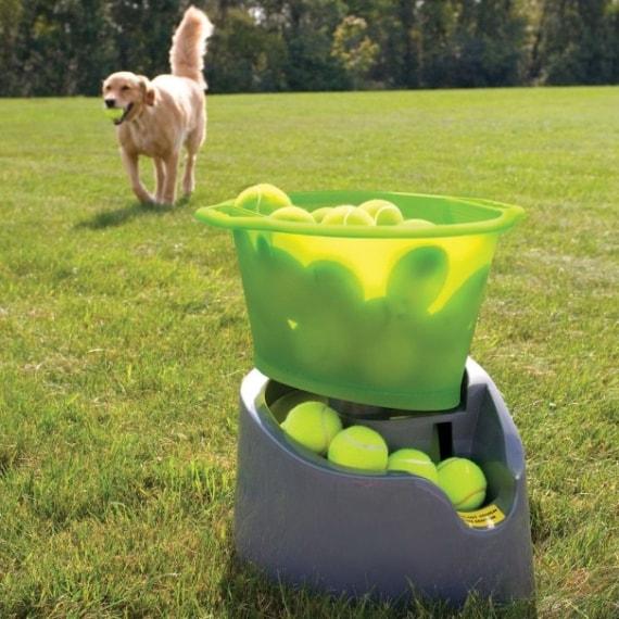 Il lancia palline da tennis che tutti loro vorrebbero.