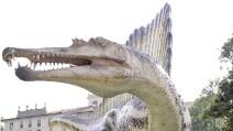 Lo Spinosauro, il più grande dinosauro mai esistito, in mostra a Milano