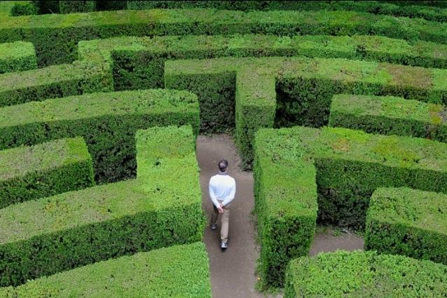 Villa Pisani è probabilmente il labirinto più famoso d'Italia: decantato da D'Annunzio, usato da Pasolini per le riprese del film Porcile, e scenografia perfetta per le opere di Goldoni. Costruito a partire dal 1721 per la nobile famiglia veneziana dei Pisani di Santo Stefano è celebre anche per il suo labirinto di siepi di bosso, uno dei tre labirinti in siepe sopravvissuti fino ad oggi.