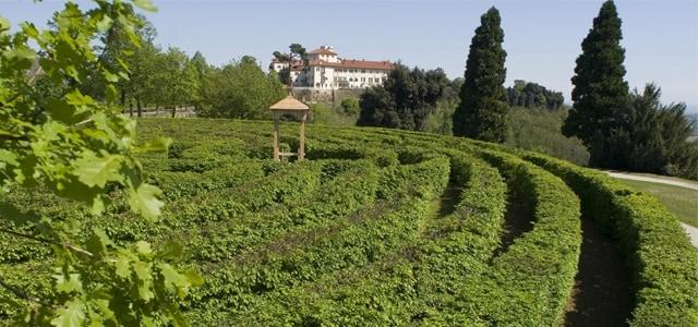 Il labirinto botanico di siepi del Castello di Masino in Piemonte è il secondo più grande d'Italia.