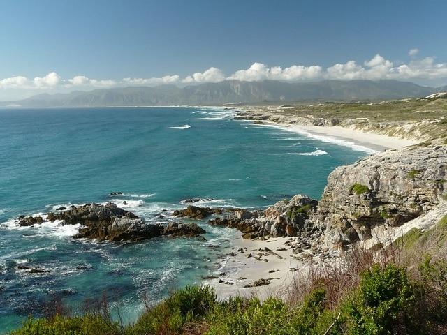 La spiaggia è minacciata dai teminbili squali bianchi https://www.flickr.com/photos/ejbluefolds/8323062560/