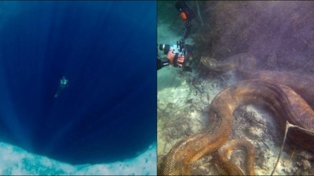 Quanto è profondo e pericoloso il mare? Le spaventose immagini