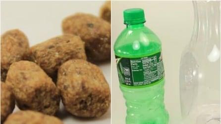 Mette le crocchette del cane in una bottiglia, il motivo è geniale