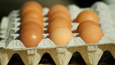 10 idee geniali per riciclare i vecchi cartoni delle uova