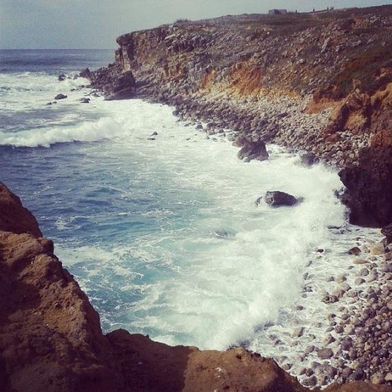 Acquario – Peniche in Portogallo