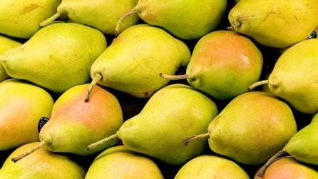 Oroscopo: ad ogni segno zodiacale un frutto estivo