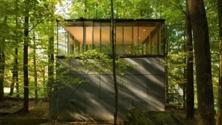 Un cubo in mezzo alla foresta: ecco cosa si nasconde al suo interno