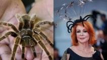 10 cose a cui somigliano i look di Marina Ripa di Meana a Venezia