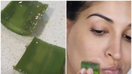 Taglia una foglia di aloe e la strofina sul viso: il risultato è sorprendente