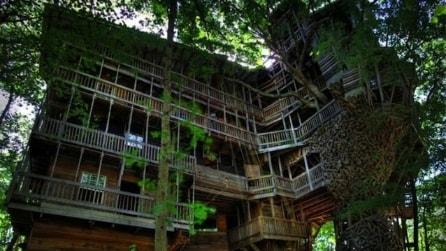 Ecco la casa sull'albero più grande del mondo