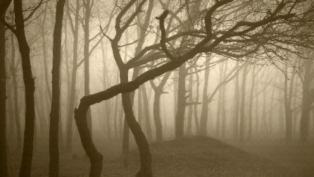 I 10 luoghi più spaventosi della Terra