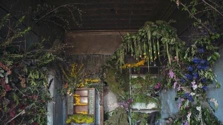 Detroit: migliaia di fiori per far rivivere una casa abbandonata