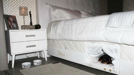 Una cuccia nel letto: ecco l'invenzione per dormire col proprio cane