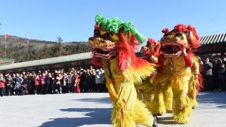 Capodanno cinese, i festeggiamenti per l'Anno della Scimmia
