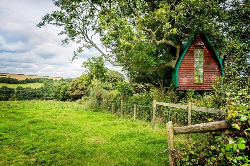 Ecco una casa sull'albero davvero particolare disponibile per 132 euro a naotte