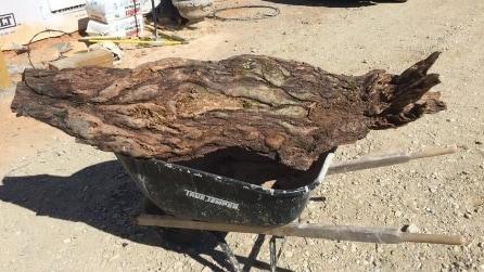 Trova un vecchio tronco e lo trasforma in qualcosa di molto utile