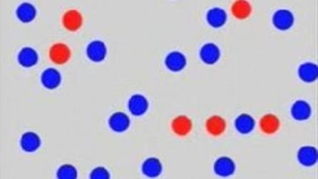 Una lettera è nascosta trai pallini ma solo l'1% riesce a vederla