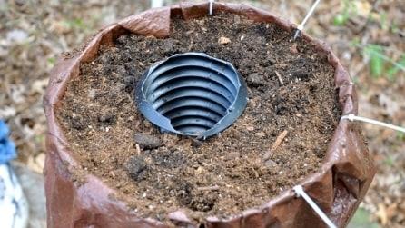 Mette un tubo nel vaso: l'idea geniale per le piante