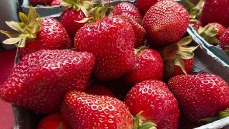 Aprile: frutta e verdura di stagione