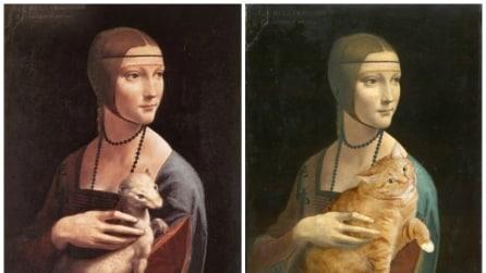 Come sarebbero le opere d'arte inserendo un gatto obeso