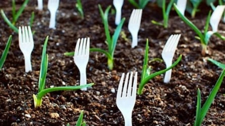 Le tecniche più efficaci per il giardinaggio