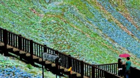 La Cina come in quadro di Van Gogh: milioni di bottiglie di plastica in un mosaico