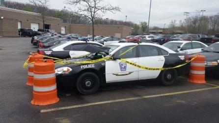 Gli agenti si avvicinano all'auto e sul parabrezza trovano un ospite inaspetto