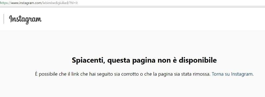 """L'eliminazione (almeno momentanea) della pagina Instagram """"Le bimbe di Giulia De Lellis"""""""